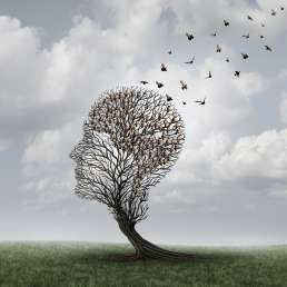 Gedächtnisverlust Demenz